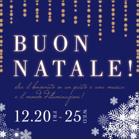 [東京・小石川]青いナポリでBuon Natale!