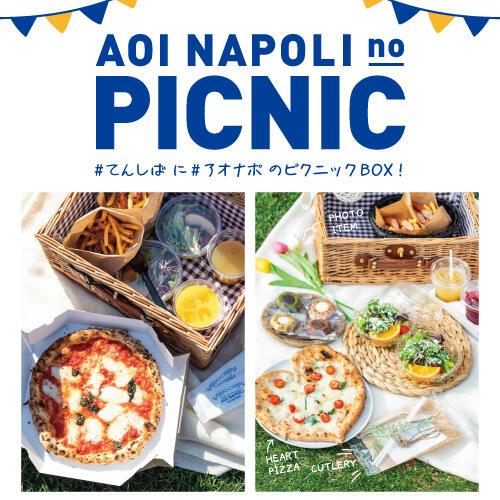 アオナポのピクニックBOX!