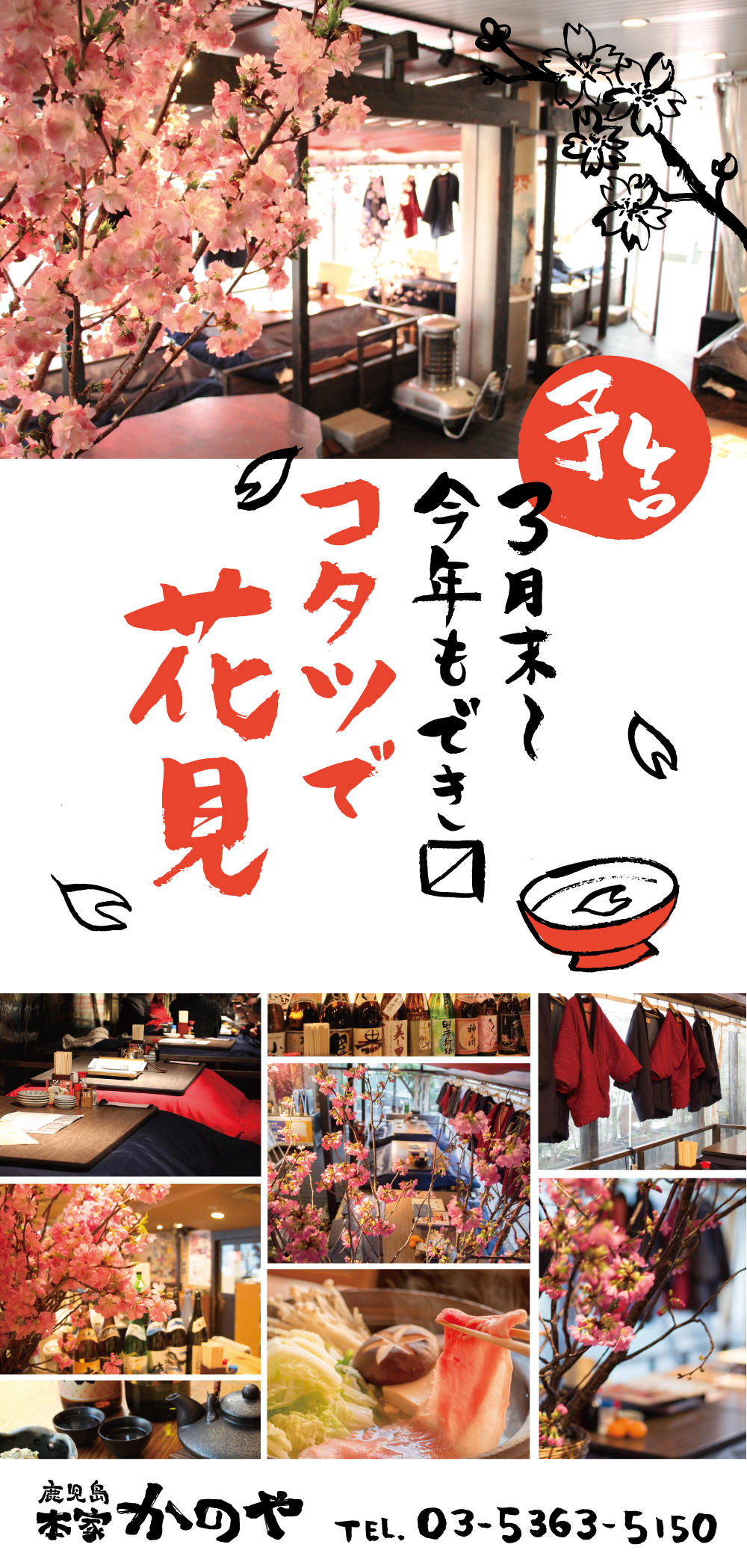 kanoya_1803_sakura.jpg